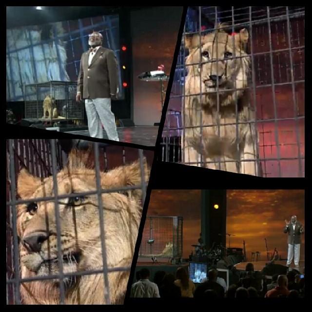 T.D. Jakes lion